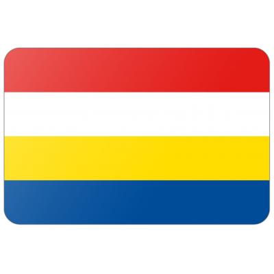 Gemeente Renkum vlag (150x225cm)