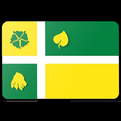 Gemeente Hof van Twente logovlag vlag (150x225cm)