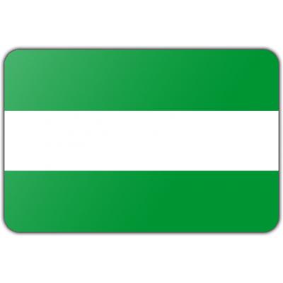 Gemeente Rotterdam vlag (100x150cm)