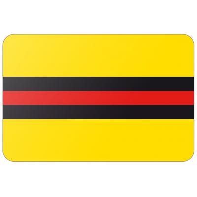 Gemeente Woudenberg vlag (70x100cm)