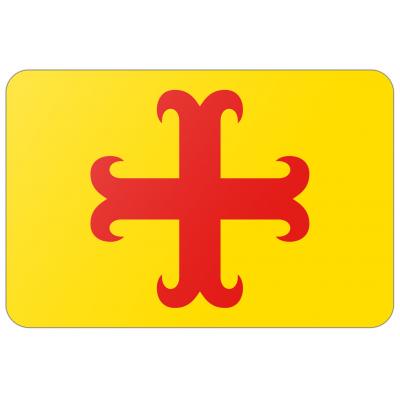 Gemeente Oegstgeest vlag (70x100cm)