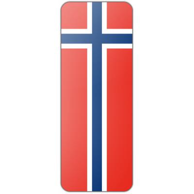 Internationale banier Noorwegen (300x100cm)