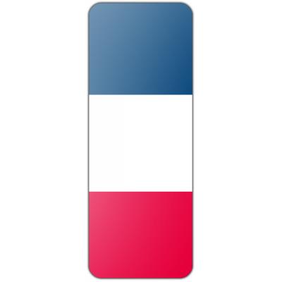 Internationale banier Frankrijk (300x100cm)