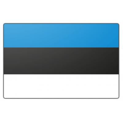 Estland vlag (70x100cm)