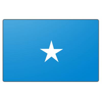 Somalië vlag (70x100cm)