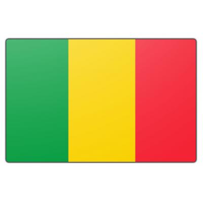Mali vlag (70x100cm)
