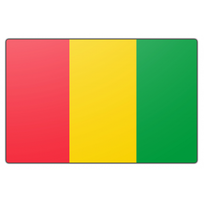 Guinee (rep.) vlag (150x225cm)