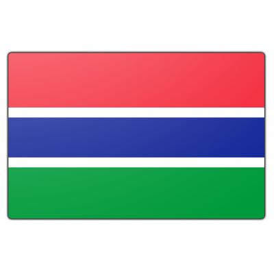 Gambia vlag (70x100cm)