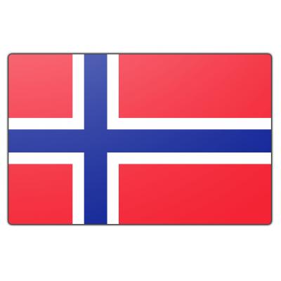 Noorwegen vlag (150x225cm)