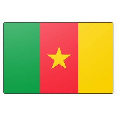 Kameroen vlag (150x225cm)