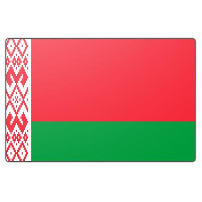 Wit Rusland vlag (70x100cm)