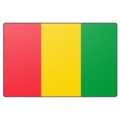 Guinee (rep.) vlag (100x150cm)