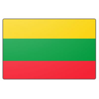 Litouwen vlag (70x100cm)