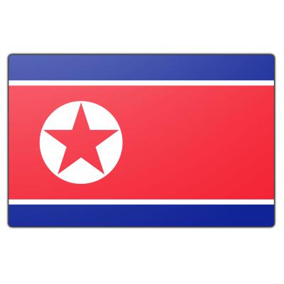 Noord Korea vlag (70x100cm)