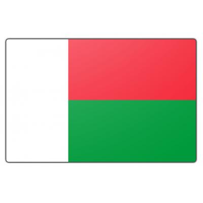 Madagaskar vlag (70x100cm)