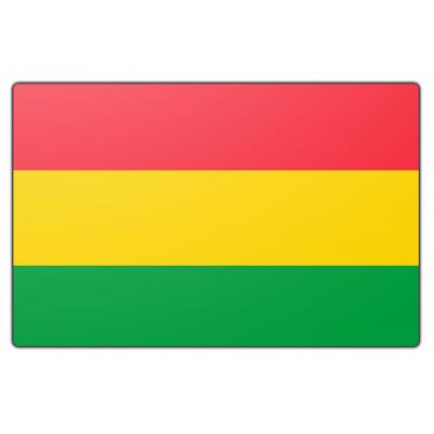Bolivia vlag (70x100cm)
