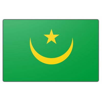 Mauritanië vlag (70x100cm)