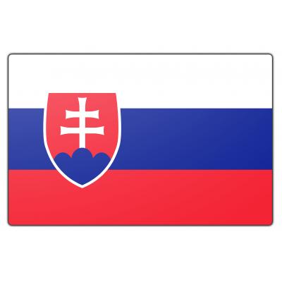 Slowakije vlag (100x150cm)