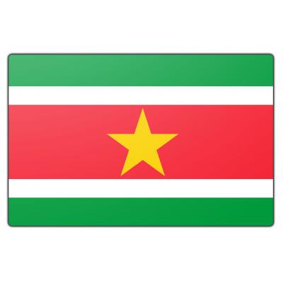 Suriname vlag (200x300cm)