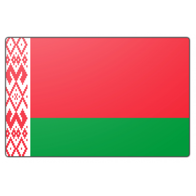 Wit Rusland vlag (100x150cm)
