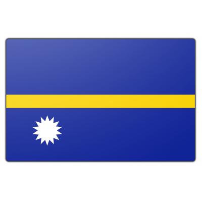 Nauru vlag (200x300cm)