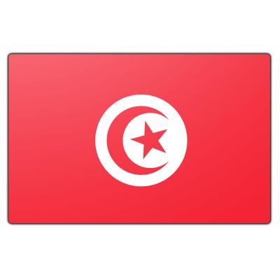 Tunesië vlag (70x100cm)