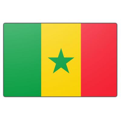 Senegal vlag (150x225cm)