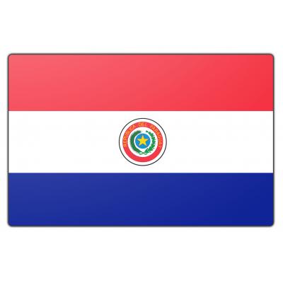Paraguay vlag (70x100cm)
