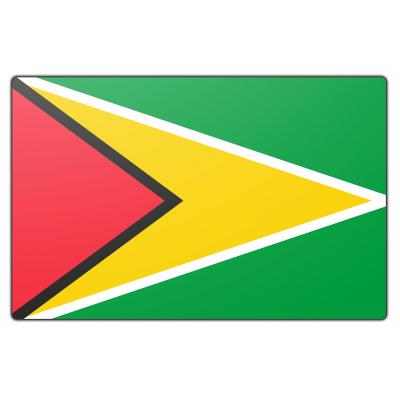 Guyana vlag (70x100cm)