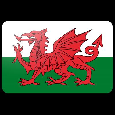 Wales vlag (70x100cm)