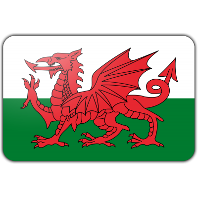 Wales vlag (200x300cm)