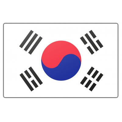 Zuid-Korea vlag (70x100cm)