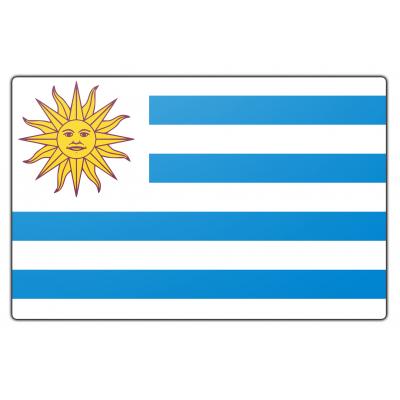 Uruguay vlag (150x225cm)