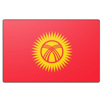 Kirgizië vlag (70x100cm)
