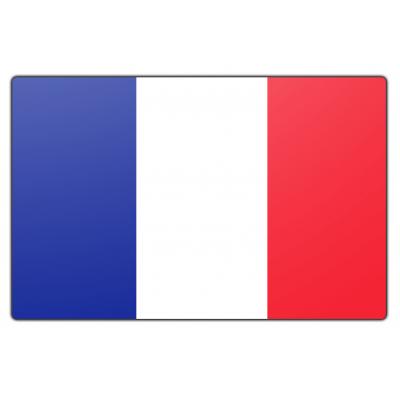 Frankrijk vlag (200x300cm)
