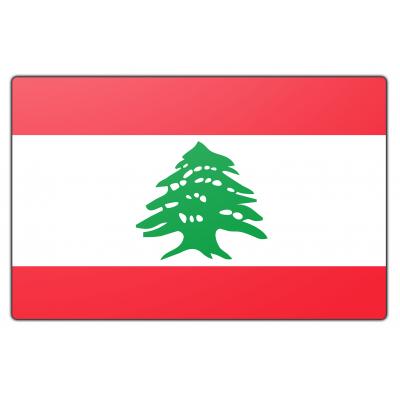 Libanon vlag (70x100cm)