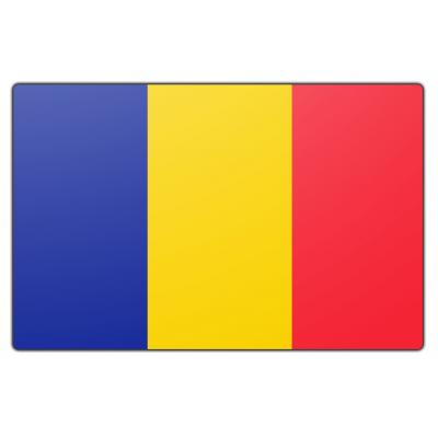 Roemenië vlag (70x100cm)