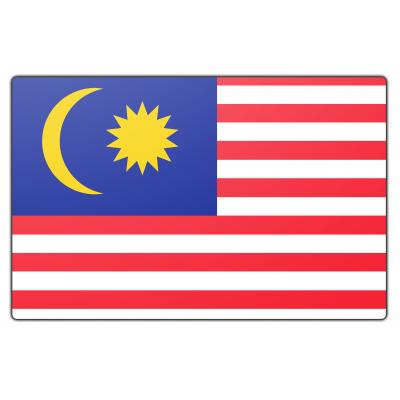 Maleisië vlag (70x100cm)