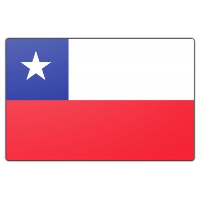 Tafelvlag Chili zonder mastje (10x15cm)
