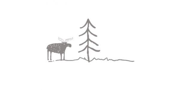 Moose Adventures