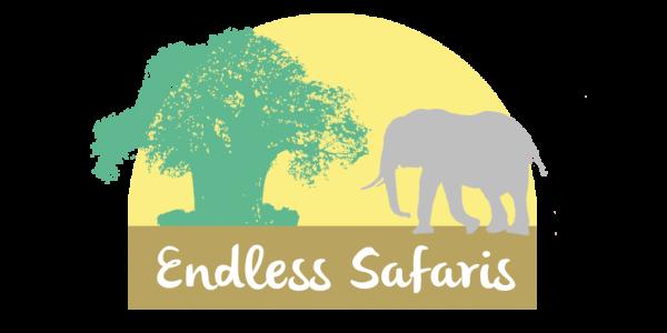 Endless Safaris