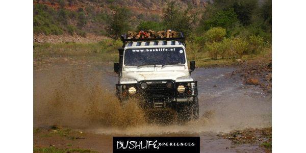 Bushlife Experiences