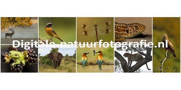 Digitale Natuurfotografie