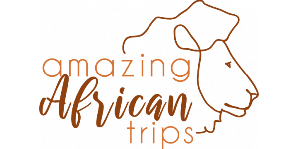 Amazing African Trips