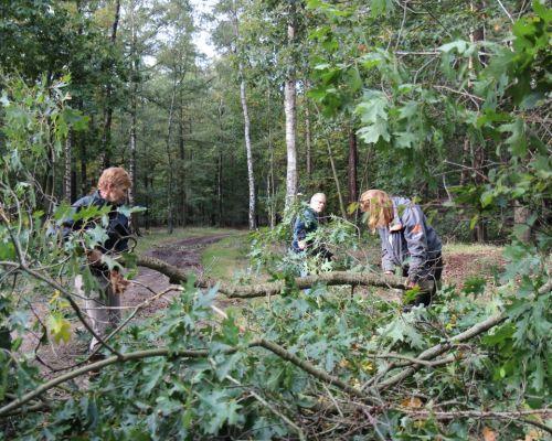 Bosonderhoud men- en ruiterpaden
